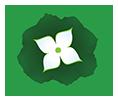 Kielkowski-Szkolka.pl Logo