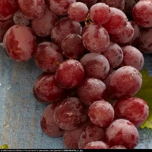 Winorośl Suffolk Red Bezpestkowa Vitis Suffolk Red
